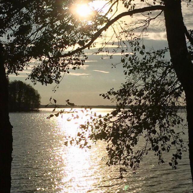 """Hyvää Isänpäivää kaikille isille, papoille, vaareille, ukeille, kaveri-hahmoille, isäpuolille, """"isä"""" hahmoille... Lämpöisiä ajatuksia myös isäksi haluaville ja asiasta murtuneille!   Toivotan yleisesti kaikille miehille aurinkoista sunnuntaita ❤️✨✨  #rakkaudellamarika #ylöjärvi #tampere #pirkanmaa #somero #koti #onneaisät #isänpäivä #sunnuntai #marraskuu #vuosi2020 #onnea #voimia #sisustussuunnittelija #sisustussuunnittelu  #rakkaudestaomaantyöhön  📸@marikansisustusstudio"""