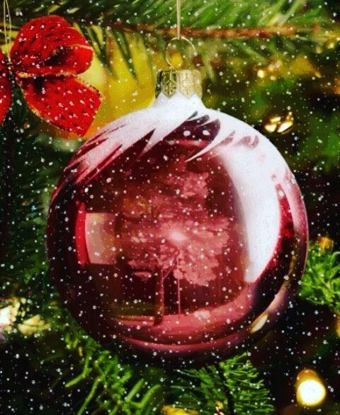 Marikan SisustusStudio toivottaa rauhaisaa joulunaikaa jokaiselle!  ✨🌹🎄✨  ❤️ #rakkaudellamarika  Marikan SisustusStudio  #sisustussuunnittelu  #sisustussuunnittelija  #ylöjärvi  #tampere  #pirkanmaa  #somero #turku #helsinki #suomi  #sisustus  #valaistus  #tekstiilit  #kiintokalusteet  #huonekalut #moderni #rustiikki #skandinaavinen #kesämökki #huvila  #saneerauskohde #uudiskohde  #toimisto #julkitila #yrittäjyys #naisyrittäjä #koti #viihtyisyys  www.sisustusstudio.com  # sisustussuunnittelua intohimolla &  11 vuoden kokemuksella 💯✨